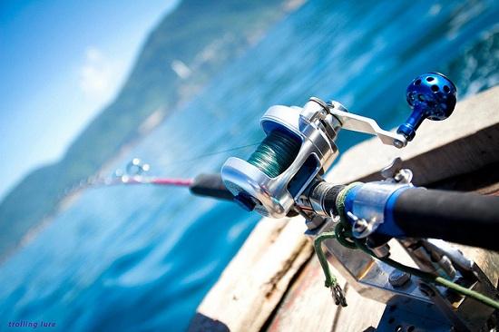 Cần câu cá biển