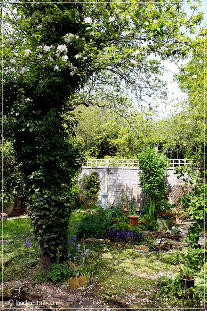 English Garden in May