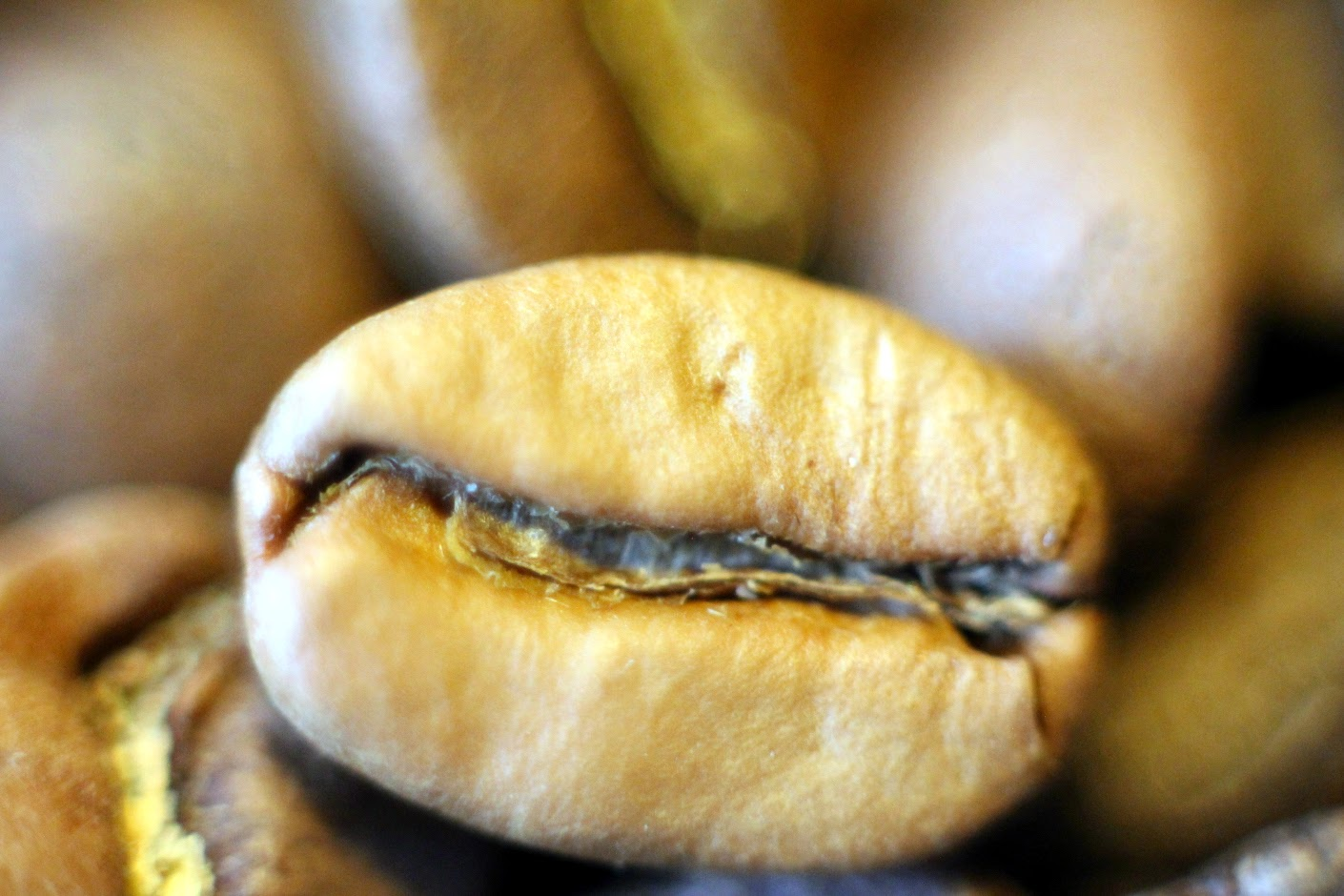 A very pale coffee bean, a quaker it appears.
