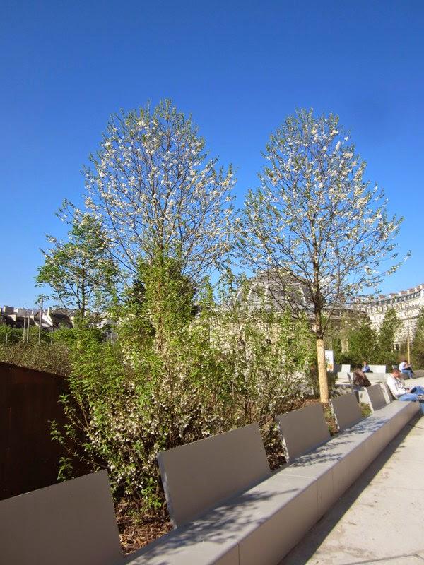 D 39 une ville l 39 autre au jardin nelson mandela for Jardin nelson mandela