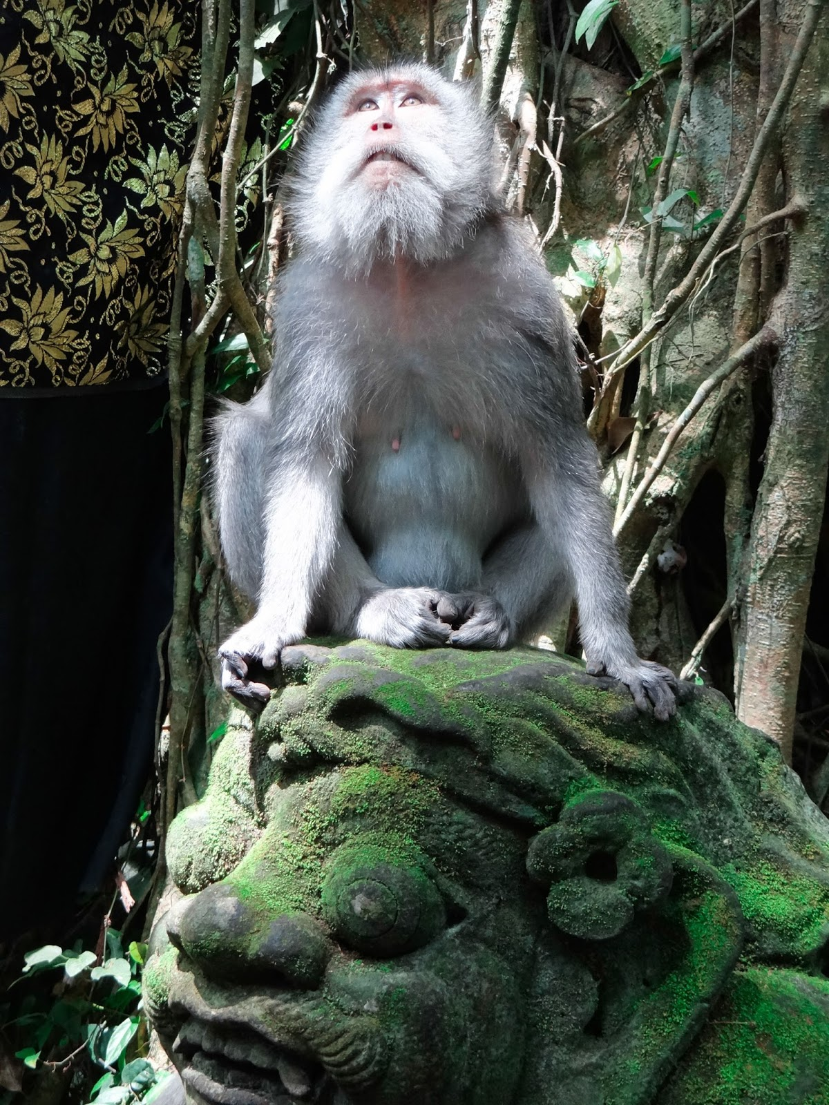 Ubud Monkey Forest Temple