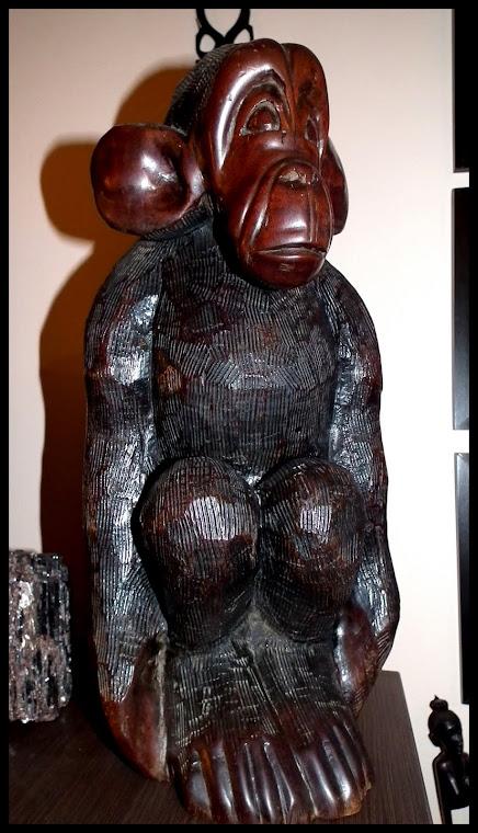 šimpanz, vážící více jak 9kg