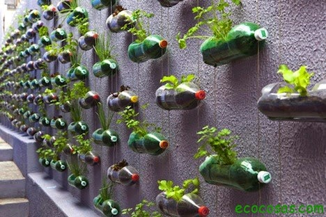 consideraciones y sugerencias para el diseÑo de cultivos