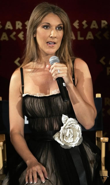Celine Dion long length Hairstyle