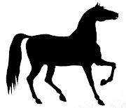 Horse silhouette / stencil.
