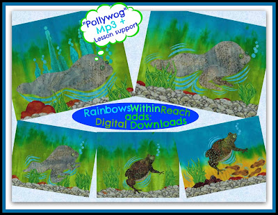 photo of: Pollywog Illustrations for Frog Life Cycle Metamorphosis of a Frog