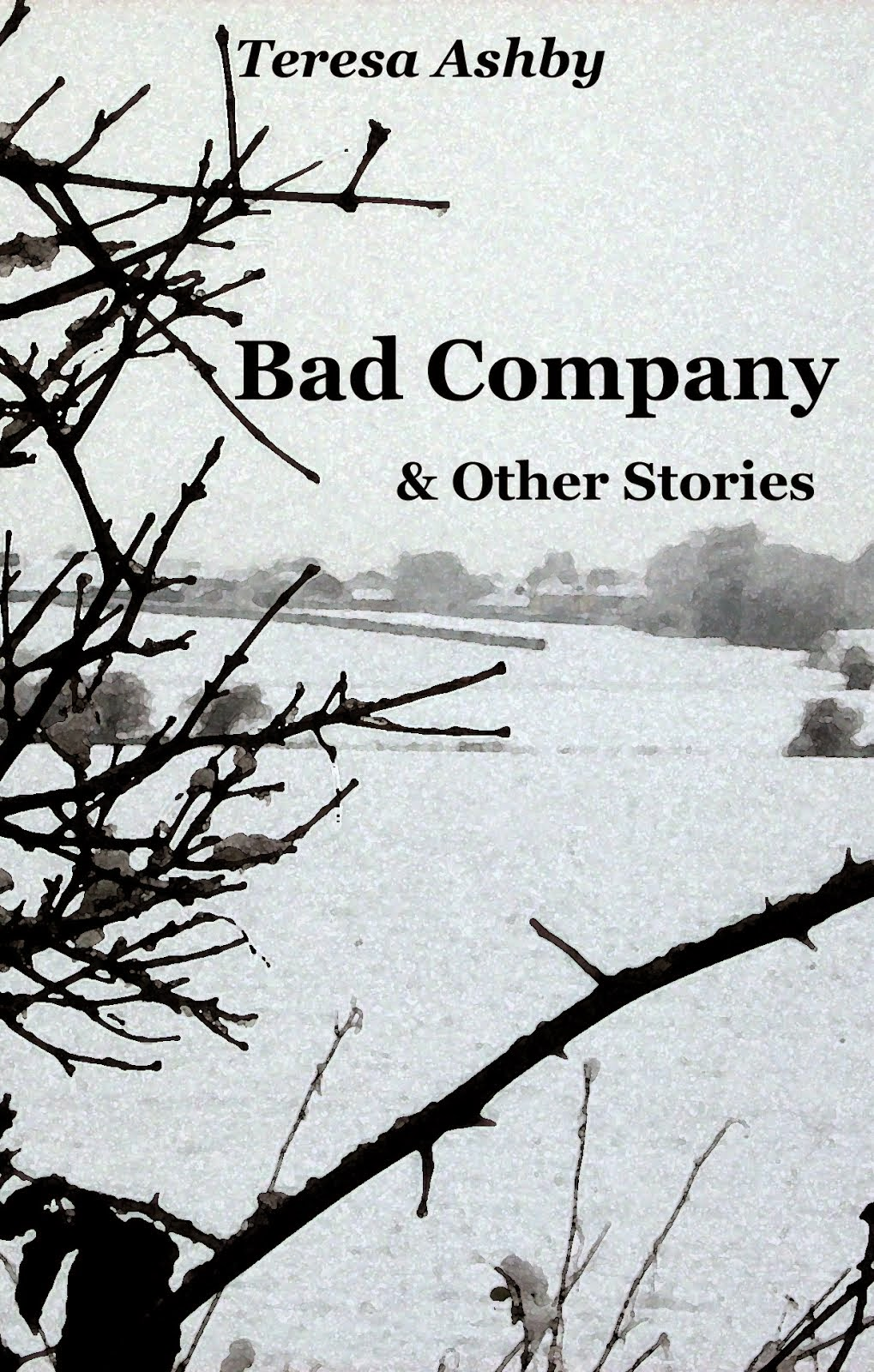 Bad Company & Other Stories - Kindle