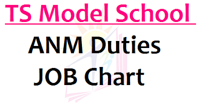 TS Model School ANM Duties, ANM JOB Chart