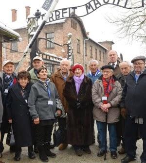 Sobreviventes do Holocausto - Coisas Judaicas