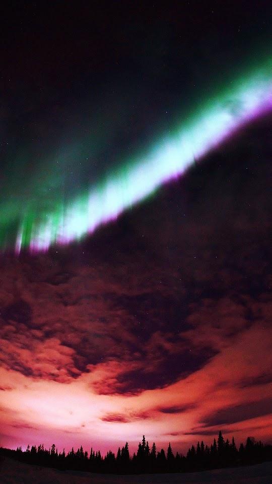 Aurora Purple Sky Forest  Galaxy Note HD Wallpaper