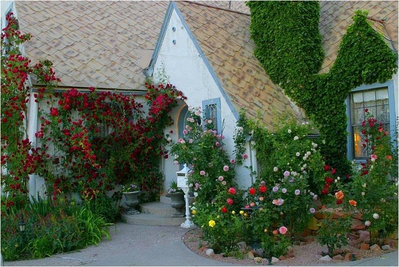 imagens jardins casas : imagens jardins casas:AMARNA IMAGENS: CASAS E JARDINS EM FOTOS