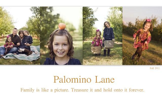 memories on palomino lane