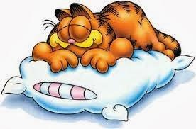 gengibre te faz dormir