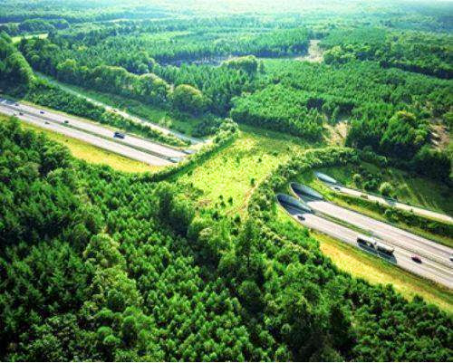 wildlife bridge in the Netherlands