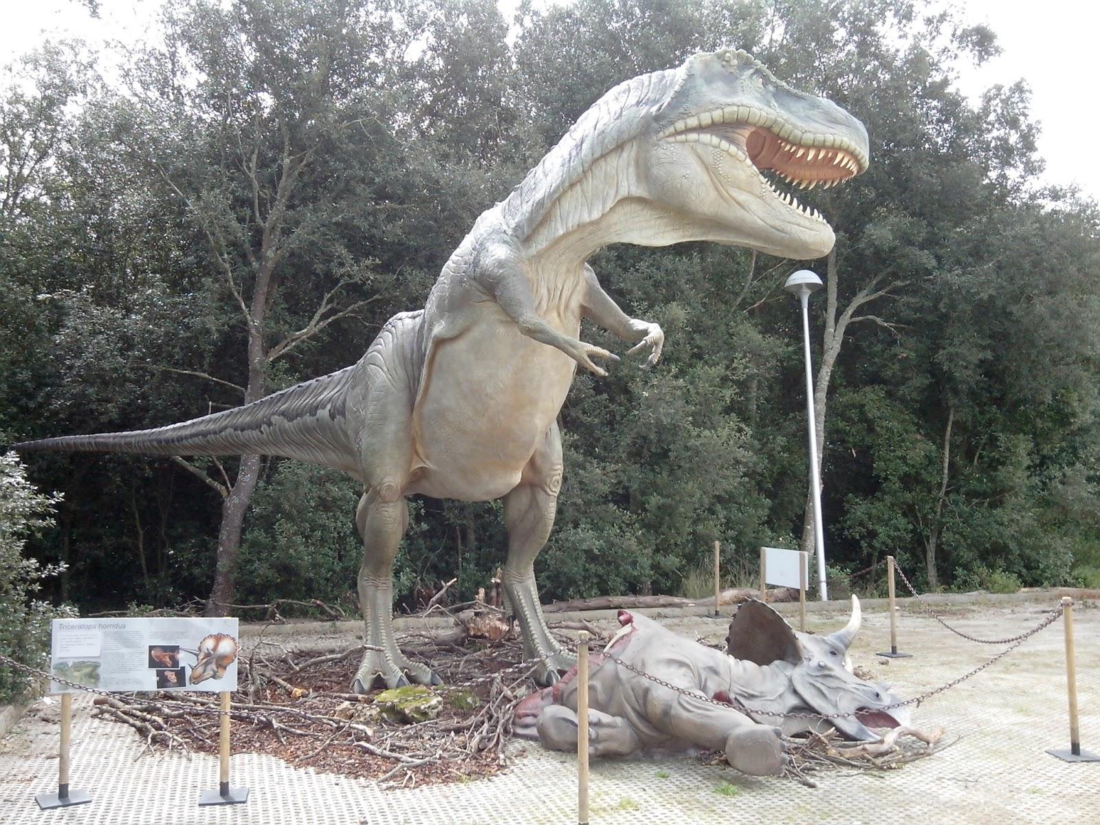 dinosauro piccolo