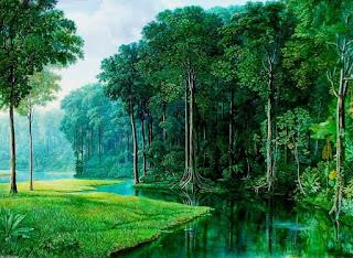 Paisajes de Bosques