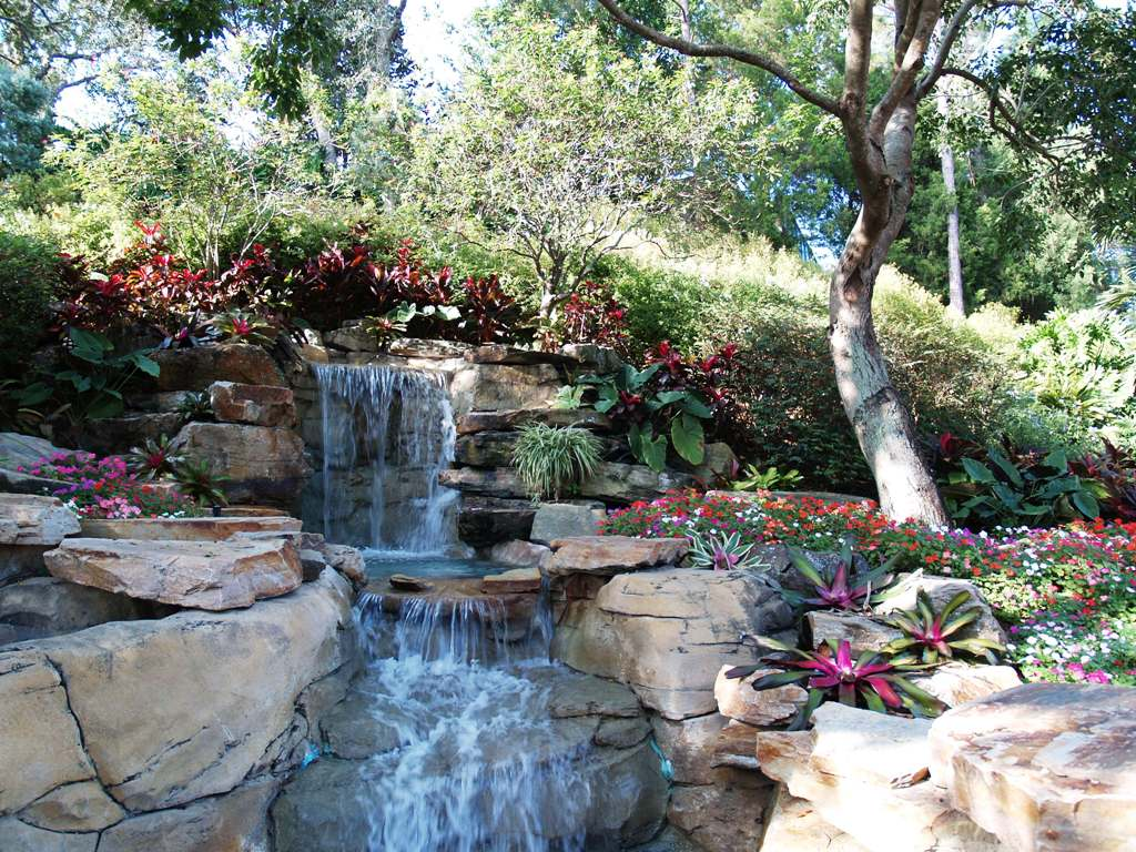 A beautiful water garden funnilogy for Backyard water garden
