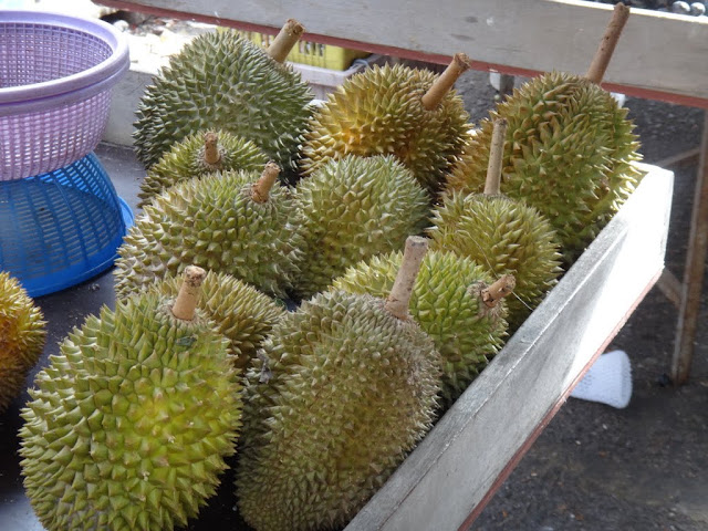 Durian is the most famous native fruit in Malaysia. Those high quality durian fruits are exported to overseas countries and sold at higher prices.