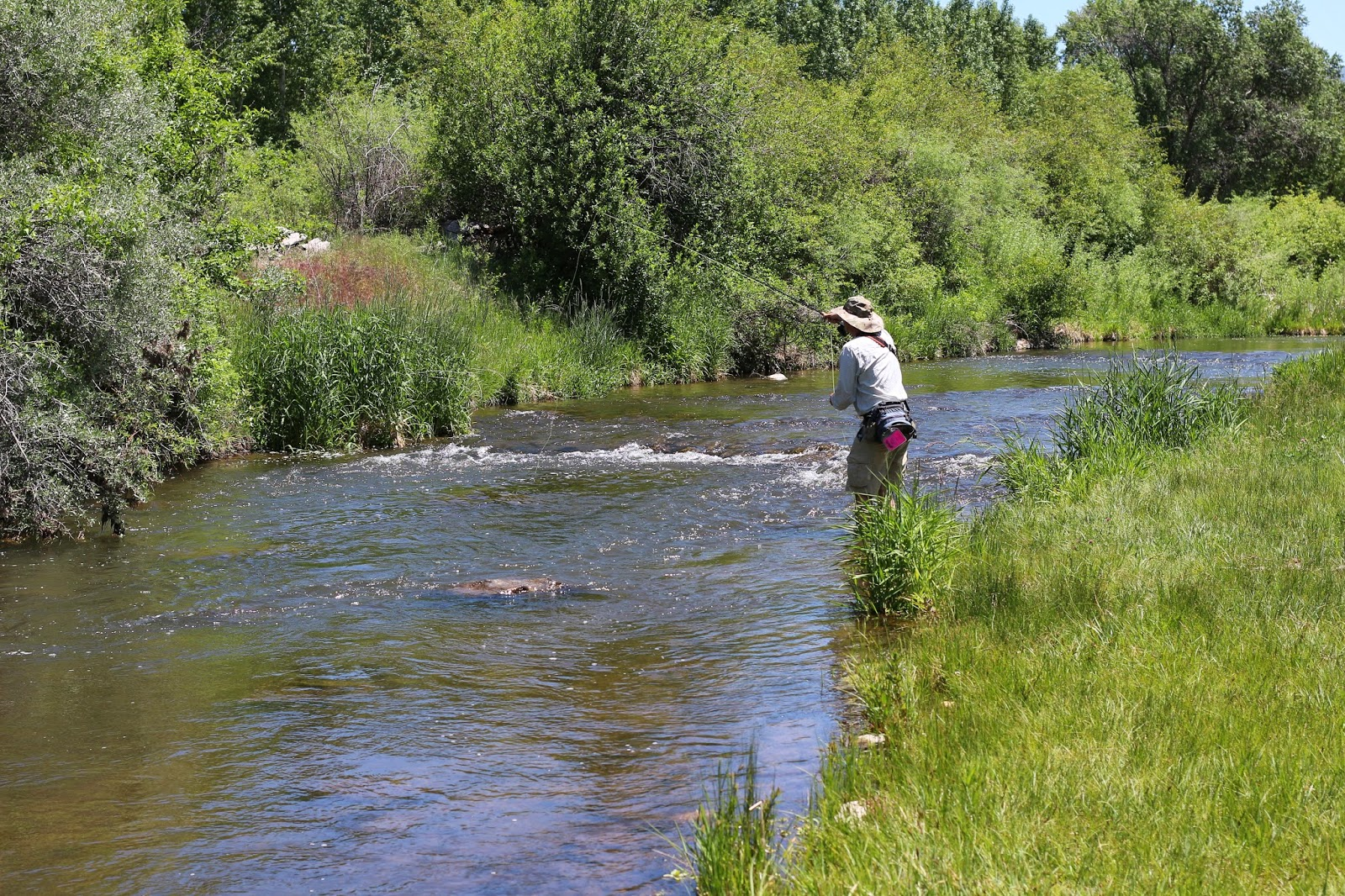 Roaring+Fork+High+Water+Photo+in+Colorado+with+Jay+Scott+Outdoors+10.JPG