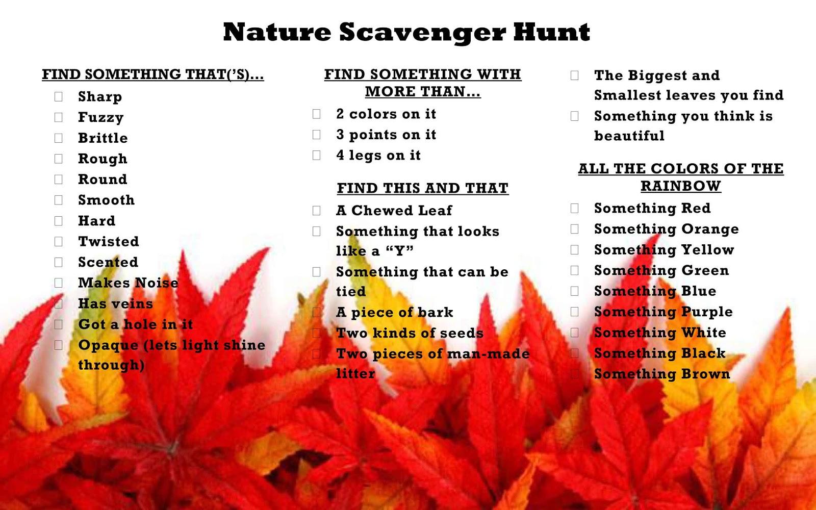 Backyard Nature Scavenger Hunt : We used these Scavenger Hunt cards that I put together I laminated