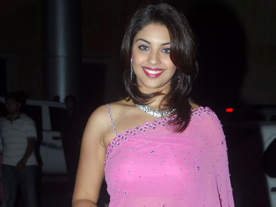 Richa Gangopadhyay Hot Pics in Pink Saree