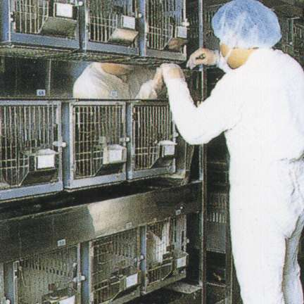 an argument against the experiment on animals in laboratory research Argument in favor of animal research: using animals ethically as research subjects yields many sides of the argument against the use of animal research.