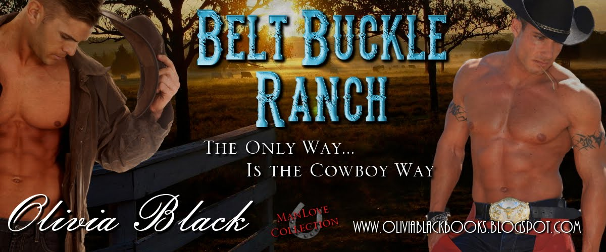Cowboy Series