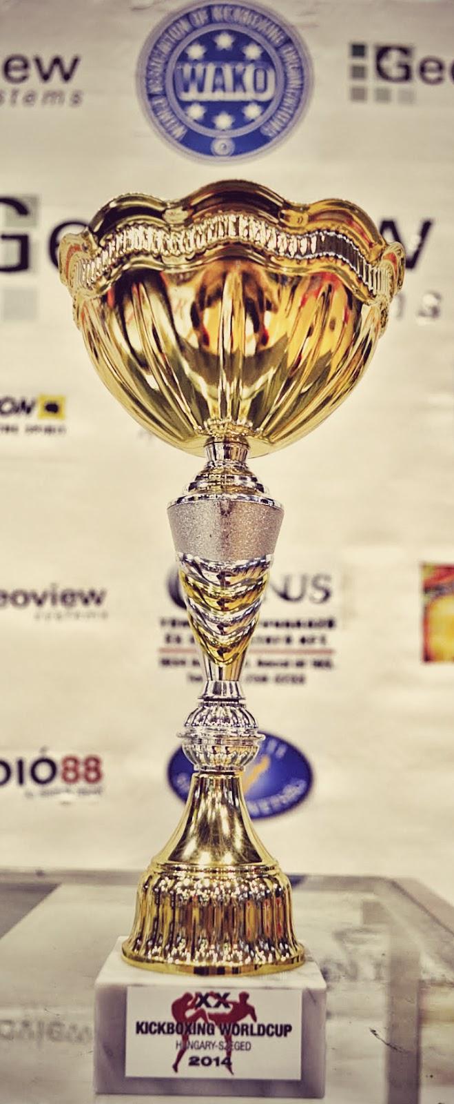 Puchar Świata, kickboxing, Szeged, 2014 r., k-1, kick light, low kick, Zielona Góra, SKF Boksing Zielona Góra