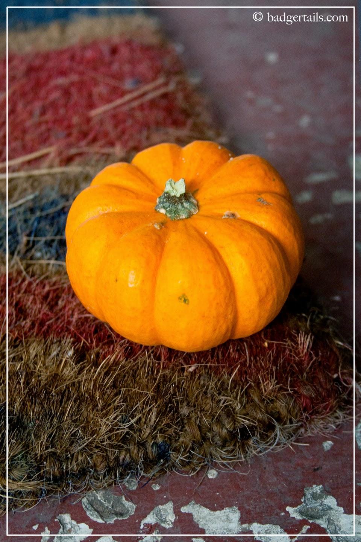 Munchkin Pumpkin on Doormat
