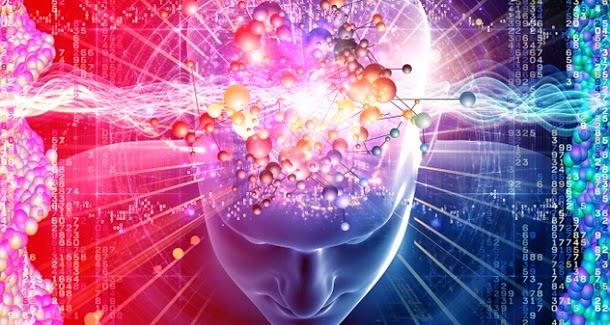 O stress encolhe o cérebro