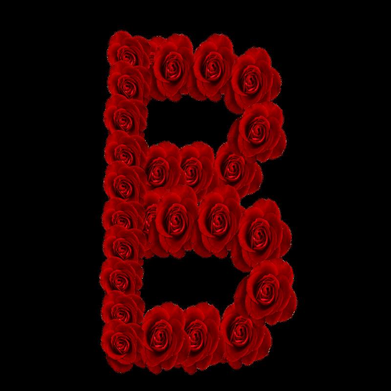 S Alphabet In Rose GRANNY ENCHANTE...