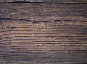 cara-mengeringkan-kayu.jpg