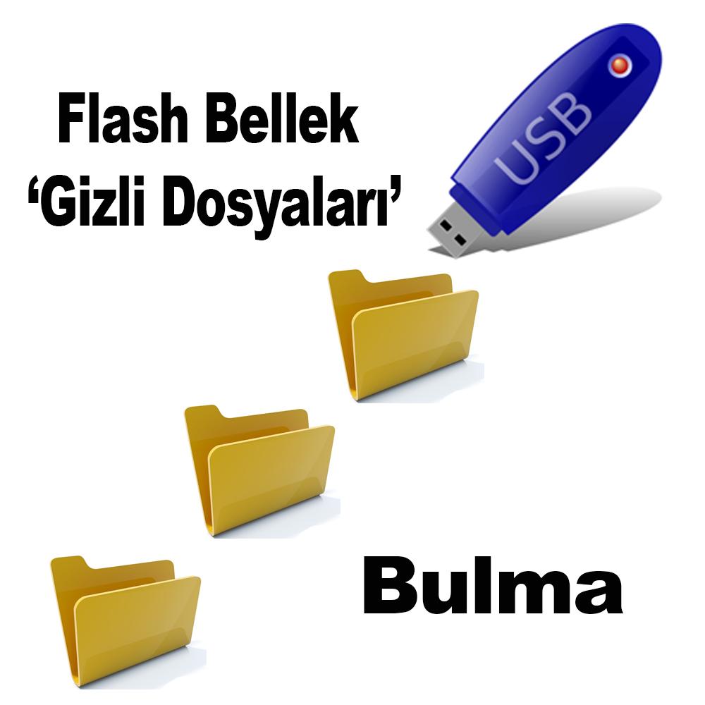 Flash Bellekte Gizli Dosyaları Bulma
