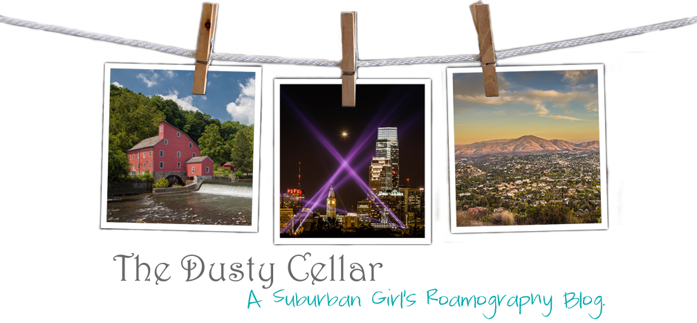 The Dusty Cellar: A Suburban Girl's Roamography Blog