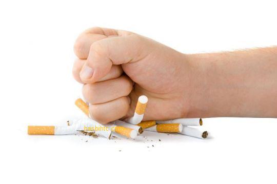 13 Penyakit yang Disebabkan oleh Rokok