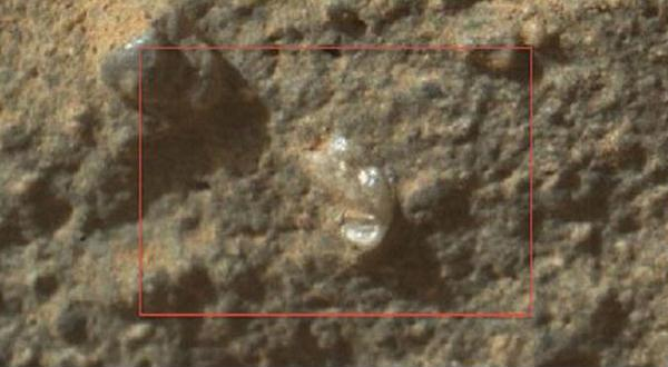 Akhirnya Terungkap Kalau di Mars Ada Kehidupan