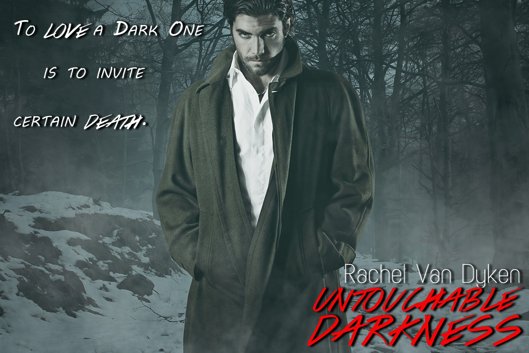 Untouchable Darkness: Volume 2 (The Dark Ones Saga), Van Dyken, Rachel, New Book