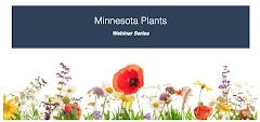 Minnesota Plants: A Summer Webinar Series from the Minnesota Landscape Arboretum