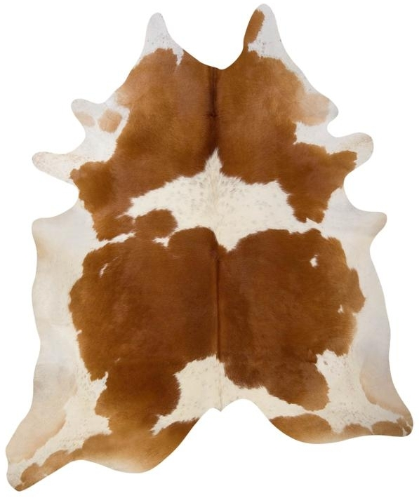 Hanlin Natural Living: Cowhide Rugs Explained