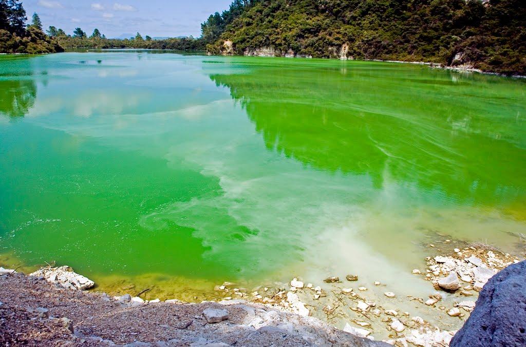 Η πράσινη λίμνη ngakoro στη νέα ζηλανδία