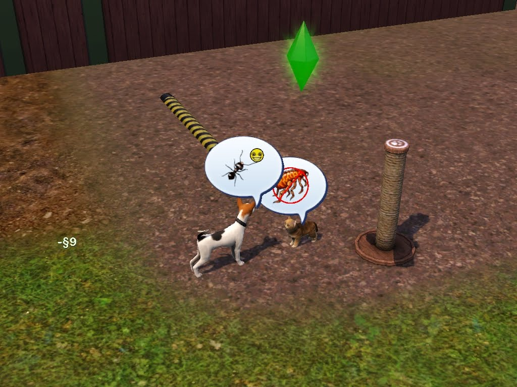 how to buy pets in sims 3