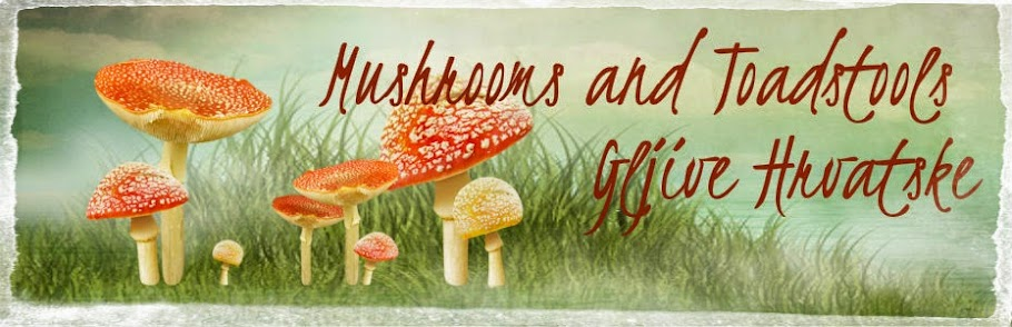 Gljive Hrvatske / Mushrooms and Toadstools