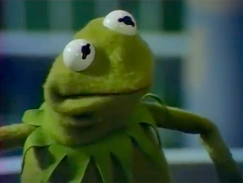 Kermit The Frog Reaction Face