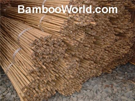 Bamboo Garden Stakes4