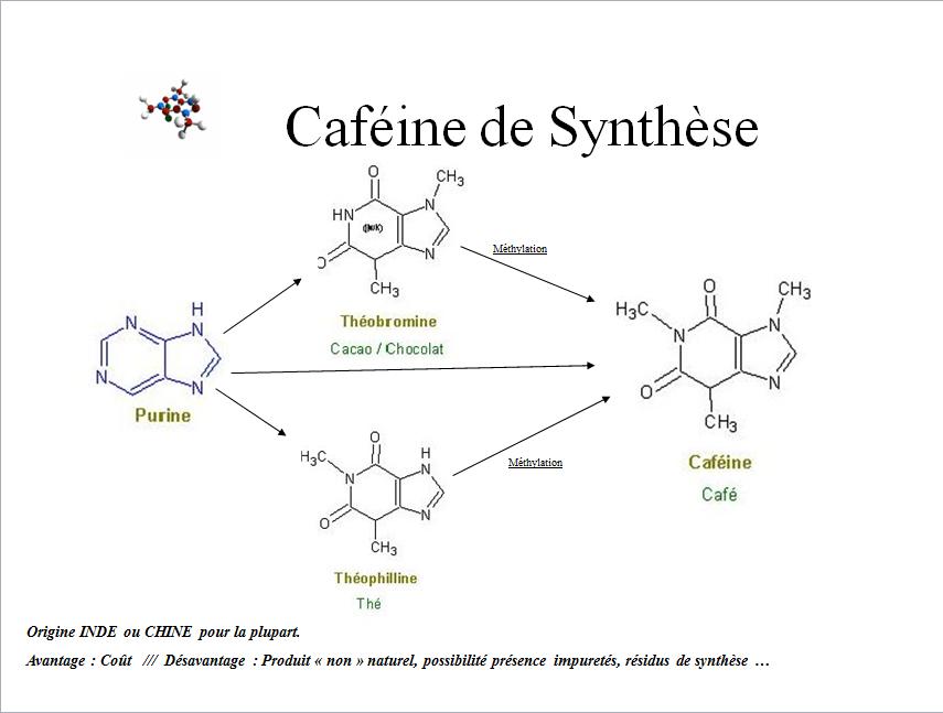 informative speech caffeine essay