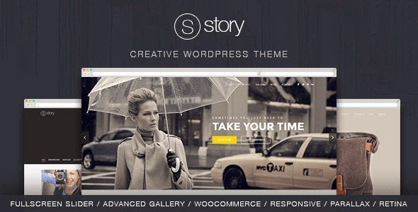 Story creative wordpress theme