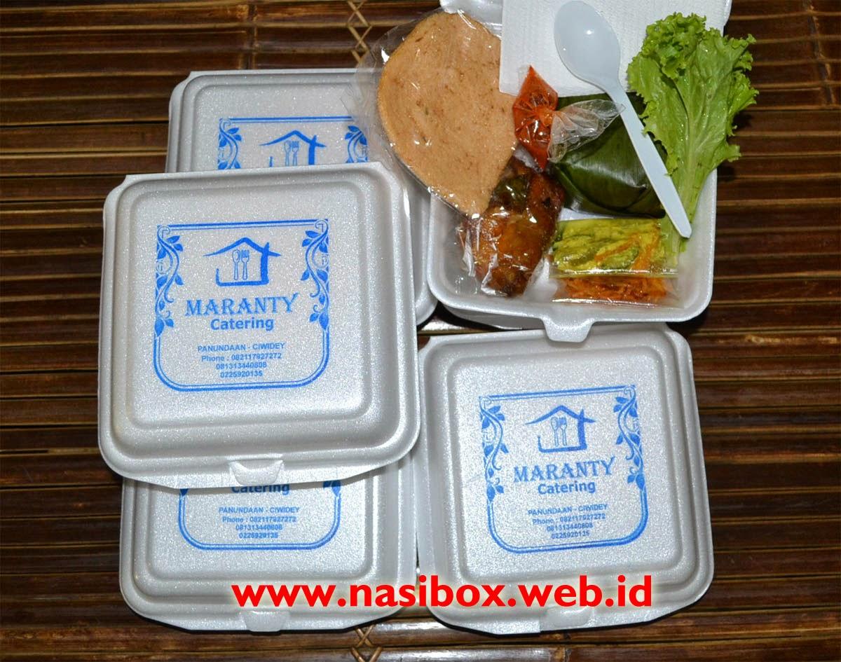 Nasi kotak sederhana
