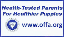 Our dogs are Health-Tested