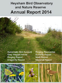 Heysham Obs 2014 report available now