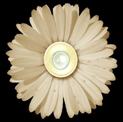 http://2.bp.blogspot.com/-hHzurHttcKY/TpK2KarXkNI/AAAAAAAAAYs/6JbaLlqhKA0/s400/cream-pearl-flower-png.png